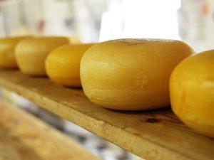 Il viaggio in houseboat attraverso i canali olandesi ci ha portato a Edam, cittadina nota per la produzione di formaggio.
