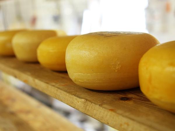 Il viaggio in houseboat attraverso i canali olandesi ci ha portato a Edam, cittadina nota per i suoi mercati di formaggi.