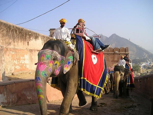 Racconti_di_viaggio_Jaipur_elefante