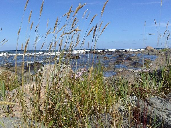 Una vista dell'oceano lungo la costa di un'isola della Svezia.