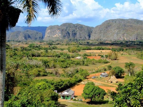 La regione occidentale di Cuba, la valle de Vinales, si caratterizza per il verde delle piantagioni di tabacco,