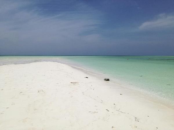 Il viaggio di Angela in Kenya era iniziato per raggiungere una spiaggia bianca, ma poi ha scoperto un mondo,