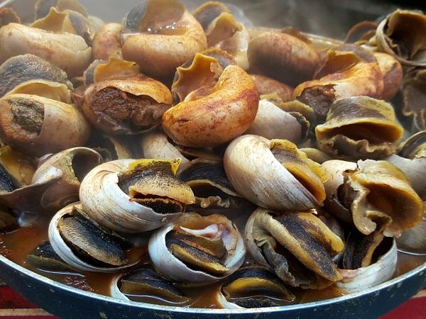 Ed ecco un evento gastronomico in Nuova Zelanda: Hokitika Wildfoods Festival...
