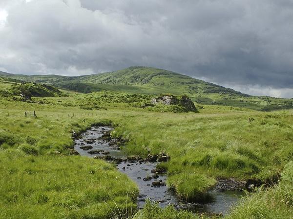 Ovunque ti giri, l'Irlanda offre prati immensi di un verde inconfondibile.
