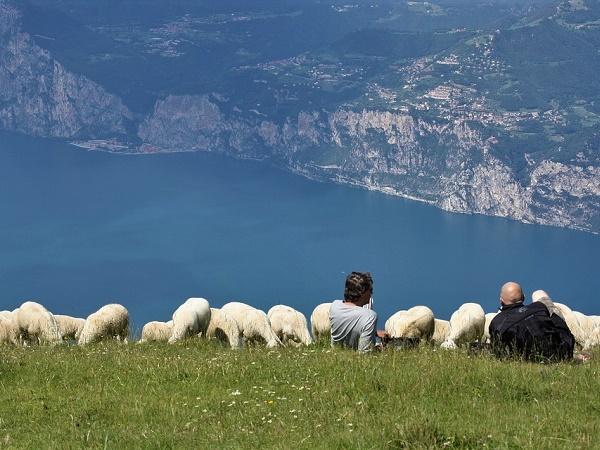 Il sentiero del Ventrar si trova sul monte Baldo, al confine tra la provincia di Verona e quella di Trento