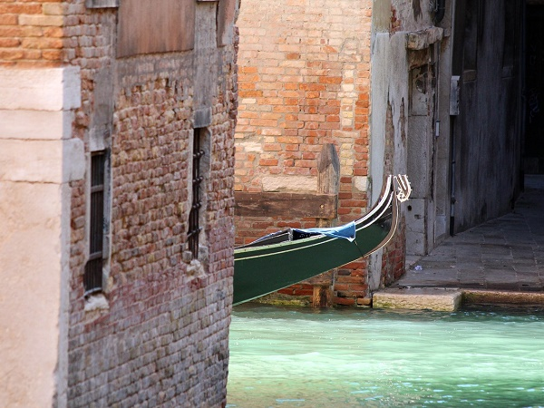 La passione per la città che queste pagine trasmettono ci rende Venezia quasi familiare.