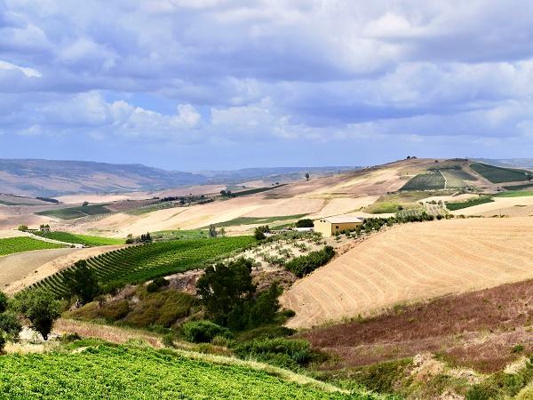 Poggioreale e Tre Fontane sono approdi sicuri in cui sostare prima di riprendere il viaggio attraverso la Sicilia con i suoi panorami aspri e la sua bellezza antica.