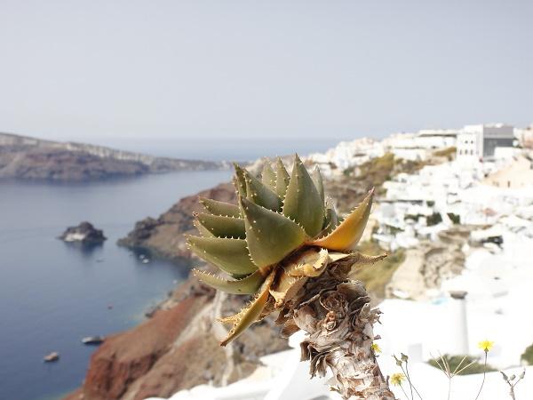Nonostante sia meta di turisti che provengono da ogni parte del mondo, Santorini ha mantenuto la sua autenticità.
