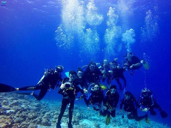 La chiave del successo è stata la decisione di soggiornare in una guest house; nel nostro caso, essendo per la maggior parte subacquei, ne abbiamo scelta una fornita anche di diving.