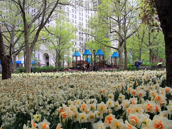 Uno dei luoghi di aggregazione che i newyorkesi preferiscono è il Madison Square Park.