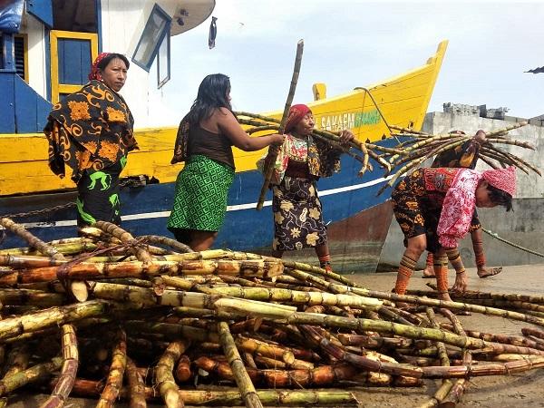 Sebbene i Guna Yala vivano da almeno due secoli nella parte orientale di Panamá, le loro origini sono ancora incerte.