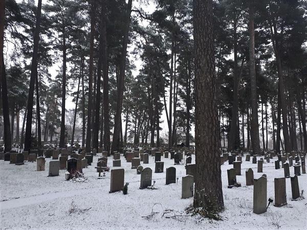 Skogskyrkogarden è un cimitero veramente insolito: un cimitero nel bosco.