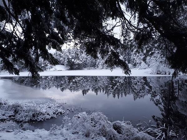 A sud di Stoccolma, si può raggiungere Trollbäcken. Qui la natura è l'unica protagonista.