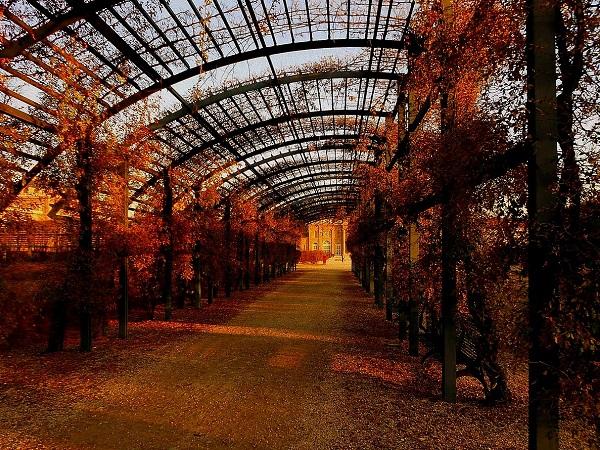 I giardini della Reggia di Venaria offrono la loro fioritura in funzione della stagione, quindi la primavera potrebbe essere il periodo consigliato. Ma attenzione alla folla!