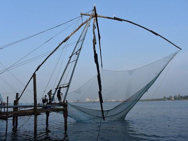 """Nel Kerala le risaie sono proprio a ridosso delle immense spiagge sabbiose, delimitate da canali dove si pratica la pesca con quelle che vengono chiamate """"reti cinesi""""."""