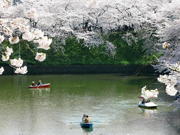 In Giappone non si rincorre il mito dell'affermazione personale ma si celebra il valore di ciascuno nella struttura sociale, quale che ne sia la funzione o il ruolo.