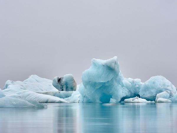 Si fanno piccole scoperte, frizzanti come il vento che scende dal ghiacciaio Vatnajökull e pennella la Laguna degli iceberg.