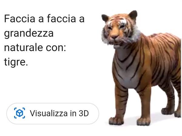 """Se volete una tigre in salotto a farvi compagnia, digitate """"tigre"""" in Google sullo smartphone e poi seguite le indicazioni per visualizzarla in 3D a grandezza naturale."""