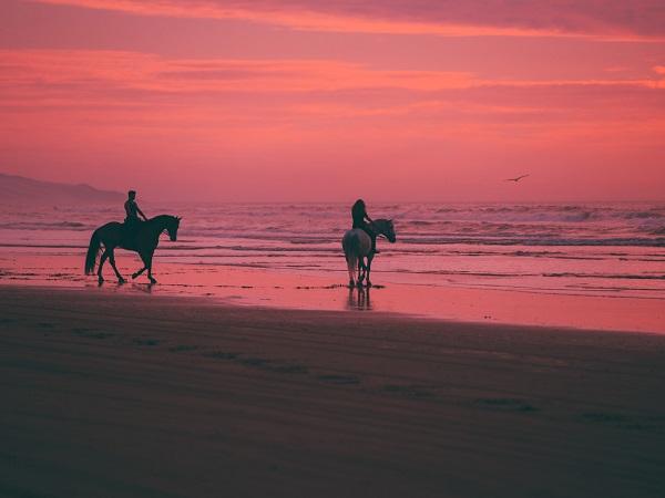 A proposito di viaggio a cavallo delle parole, il Touring Club Italiano ha pubblicato a oggi (7 aprile) 23 tappe di un viaggio tutto di parole lungo tutti i continenti.