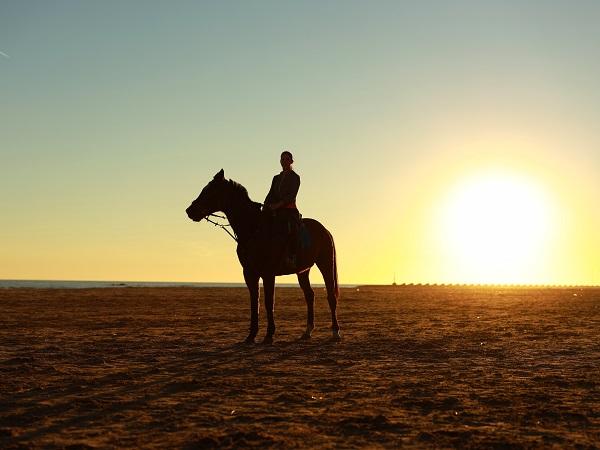Le consulenti dei Viaggi al femminile propongono una forma di viaggio a cavallo attiva, più da protagoniste: invitano a saltare in sella della propria fantasia o dei propri ricordi e a raccontare l'esplorazione di casa, ispirata a Lonely Planet, o il proprio ultimo viaggio.