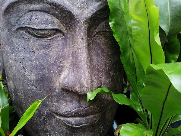 Da un anno ho iniziato a meditare. Un minuto alla volta, la meditazione è entrata a fare parte della mia quotidianità, mi ha aiutata a rallentare il mio ritmo, a riscoprire i dettagli della vita di ogni giorno che stavo trascurando.