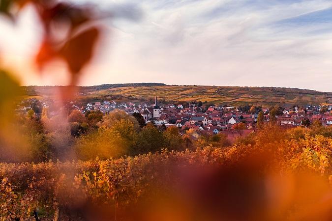 Un piccolo gruppo di donne (9 e non una di più!) andranno a scoprire l'Alsazia dal 24 al 27 settembre 2021, per riprendere a viaggiare in gruppo e godersi luoghi ed enogastronomia.