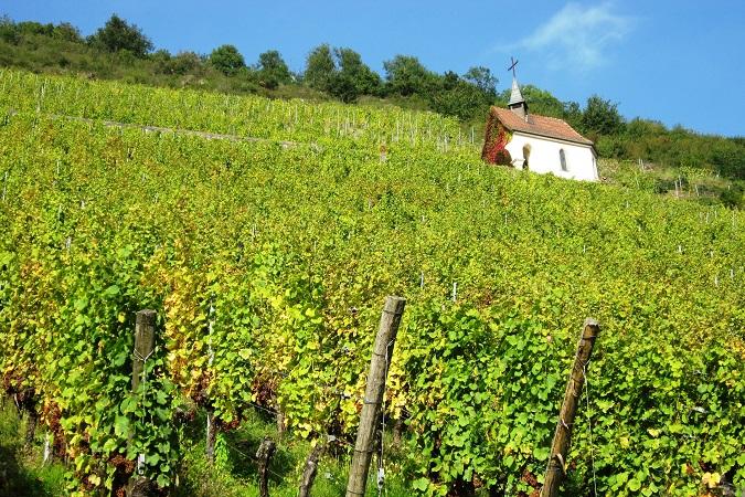 Un piccolo gruppo di donne andrà a scoprire l'Alsazia dal 24 al 27 settembre 2021: partiranno in minivan dall'Italia e, dopo una prima giornata a Strasburgo, raggiungeranno Colmar, Orschwiller, Ribeauvillé, Riquewihr edEguisheim, seguendo la strada dei vini.
