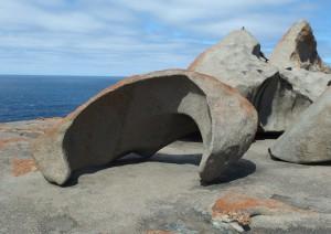 Adelaide / Kangaroo Island.jpg
