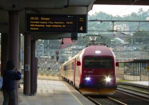 Flåm - Sognefjord - Bergen (treno + Barca + Bus).jpg