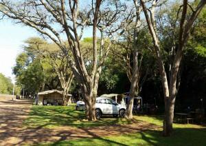 Johannesburg - Parco Kruger.jpg