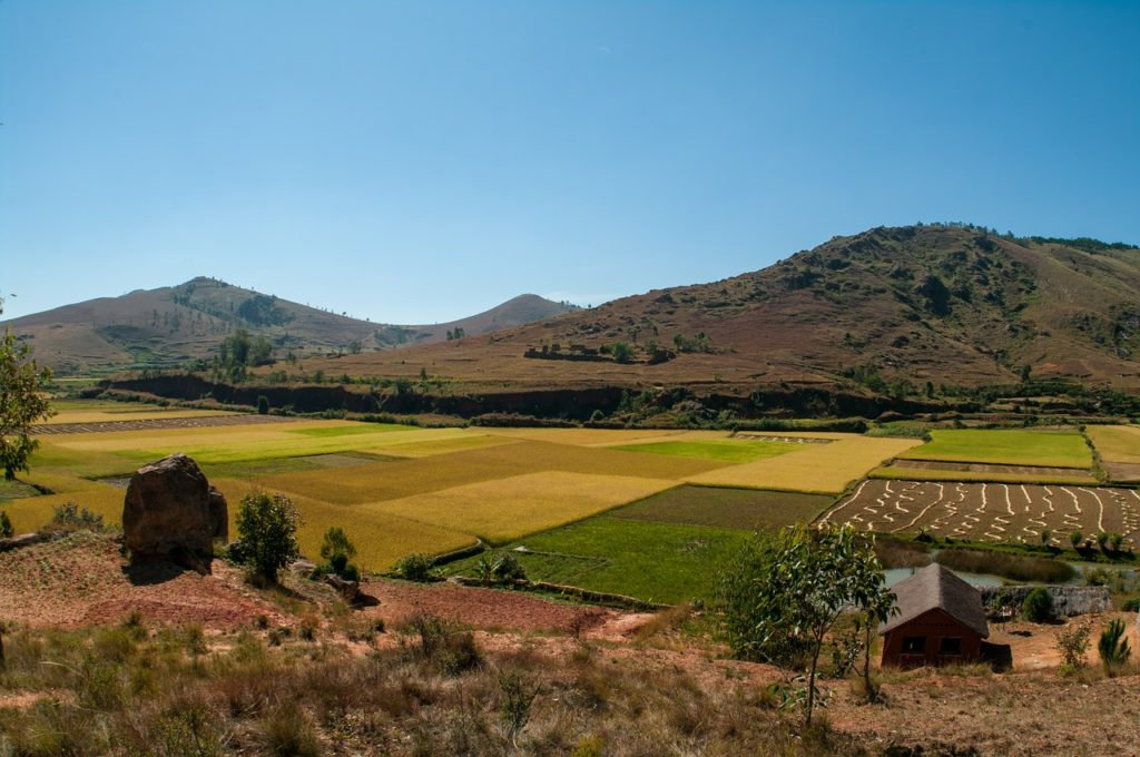 Madagascar: Tour Del Sud E Soggiorno Mare A Ifaty ...