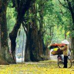 Ho Chi Minh (Saigon)