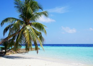 Colombo (volo) Malé/maldive.jpg