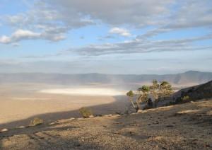 Parco Del Serengeti - Cratere Del Ngorongoro.jpg