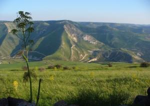 Cafarnao - Alture Del Golan - Safad - Nazareth.jpg