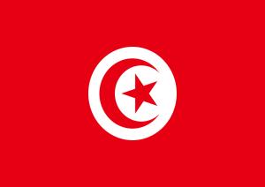 Arrivo A Tunisi.jpg