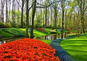 Amsterdam: Visita Del Parco Keukenhof.jpg