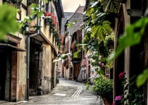 (14/09/2019) Vini Alsace Grand Cru Aoc E Colmar (170 Km).jpg