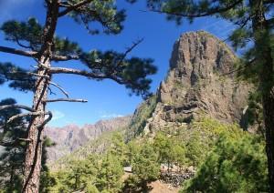 La Palma.jpg
