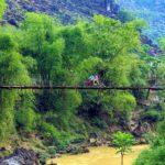 parco naturale vietnam