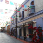 Una strada di Todos Santos
