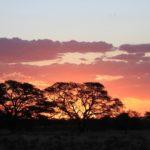Gli intensi tramonti africani