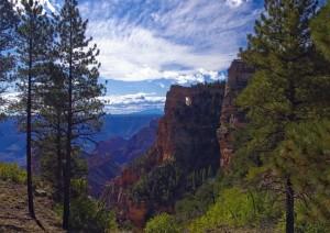 Grand Canyon Np - Kayenta (210 Km / 2h).jpg