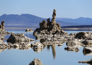 Yosemite Np - Tioga Road - Mono Lake - Bridgeport (2h).jpg