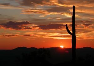 Pioneertown - Deserto Di Sonora - Sedona (645 Km / 6h).jpg