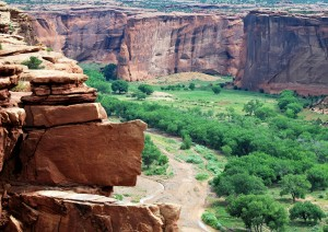 Mesa Verde - Canyon De Chelly (235 Km / 2h 30min).jpg