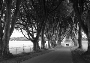 Belfast - Dark Hedges - Carrick-a-rede - Giant's Causeway - Mussenden Temple - Downhill Beach - Derry (185 Km / 3h 45min).jpg