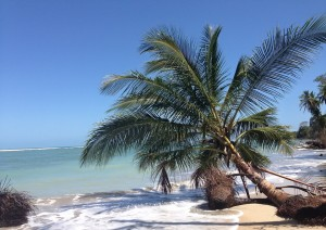Arenal - Playa Tamarindo  (215 Km / 2h 30min).jpg