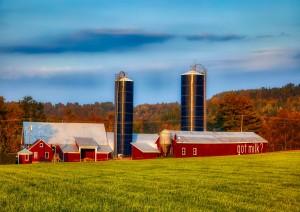 Stowe - Woodstock - Springfield (315 Km / 3h 25min).jpg