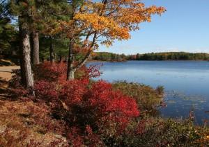 Acadia National Park.jpg